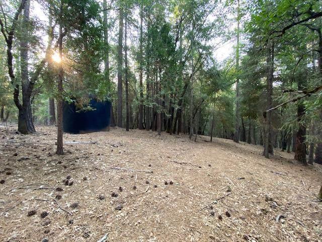 4790 Sierra Springs Drive - Photo 1