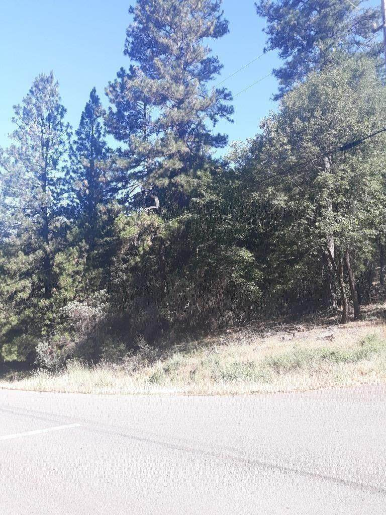 20528 Wolf Creek Road - Photo 1