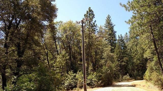 12302 Buckeye Road, Nevada City, CA 95959 (MLS #20046808) :: Keller Williams - The Rachel Adams Lee Group