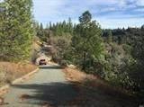 42 Petersen Ranch Drive - Photo 5