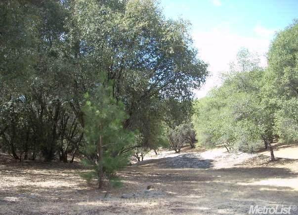 71 Dream Ranch Circle - Photo 1