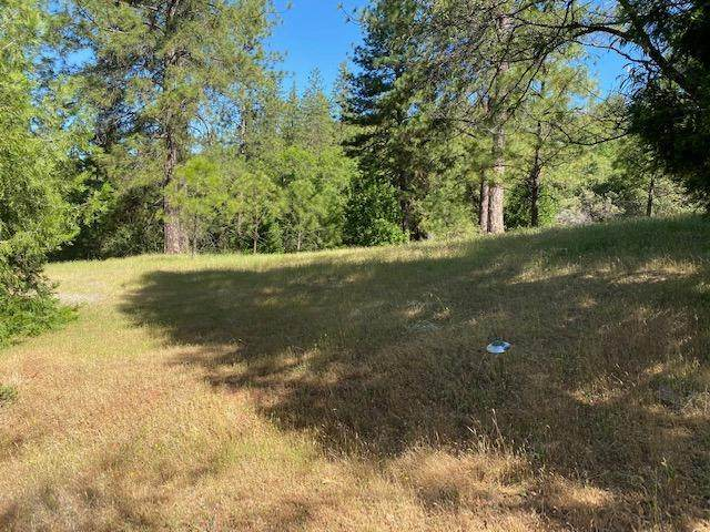 0 Timber Ridge Road, Pine Grove, CA 95665 (MLS #221052498) :: Live Play Real Estate   Sacramento