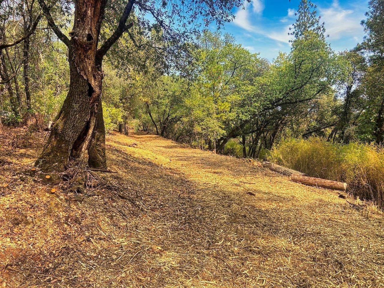 0 Lake Arthur Road - Photo 1