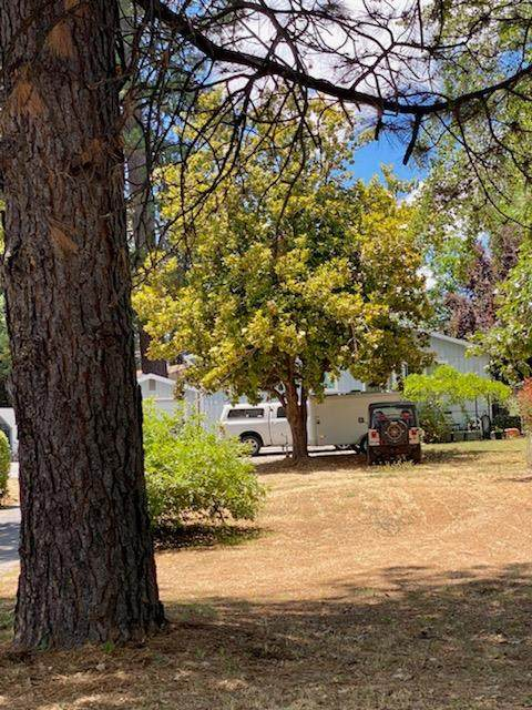 516 Whiting, Grass Valley, CA 95945 (MLS #221038082) :: Keller Williams Realty