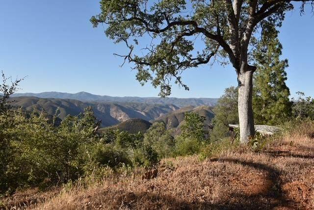 6816 Rancheria Creek Road - Photo 1