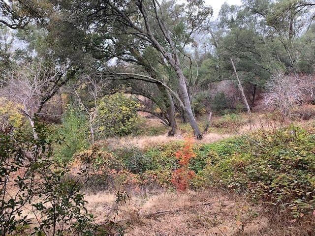 0 Green Valley Road, El Dorado Hills, CA 95762 (MLS #221135534) :: Keller Williams Realty
