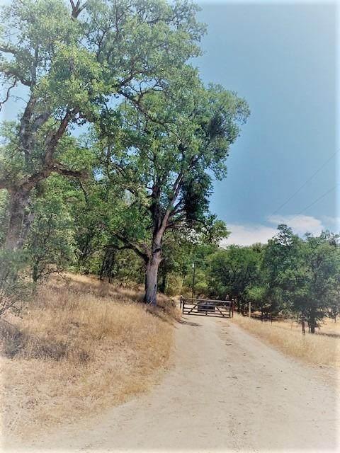 4771 Mary Harrison Mine Road, Coulterville, CA 95311 (MLS #221066476) :: Keller Williams - The Rachel Adams Lee Group