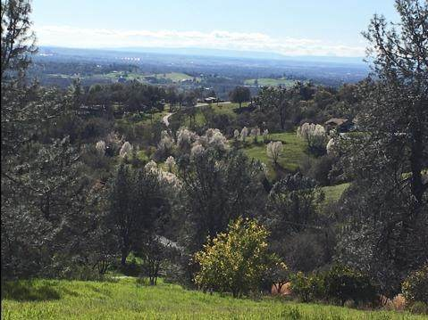 4213 Cold Stream Road, Auburn, CA 95602 (MLS #20062843) :: The MacDonald Group at PMZ Real Estate
