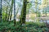 Lot 1801-42855 Fir Grove - Photo 41
