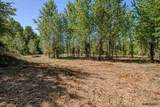 Tax Lot 100 Hume (End Of) - Photo 29