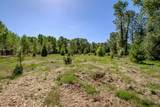Tax Lot 100 Hume (End Of) - Photo 32