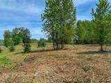 Tax Lot 100 Hume (End Of) - Photo 16