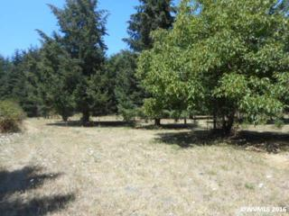 7744 Fanny SE, Aumsville, OR 97325 (MLS #708295) :: HomeSmart Realty Group