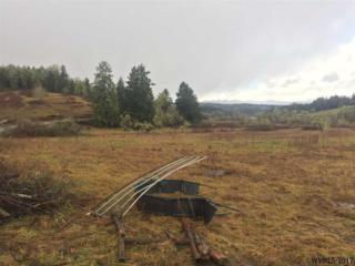 2509 Liberty (Lot #2), Dallas, OR 97338 (MLS #716367) :: HomeSmart Realty Group
