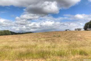 Foster (Lot #50), Monroe, OR 97456 (MLS #704700) :: HomeSmart Realty Group