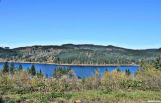 6304 Lake Pointe, Sweet Home, OR 97345 (MLS #711819) :: HomeSmart Realty Group