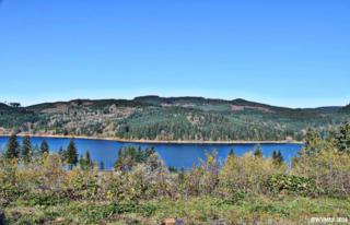 6324 Lake Pointe, Sweet Home, OR 97345 (MLS #711832) :: HomeSmart Realty Group