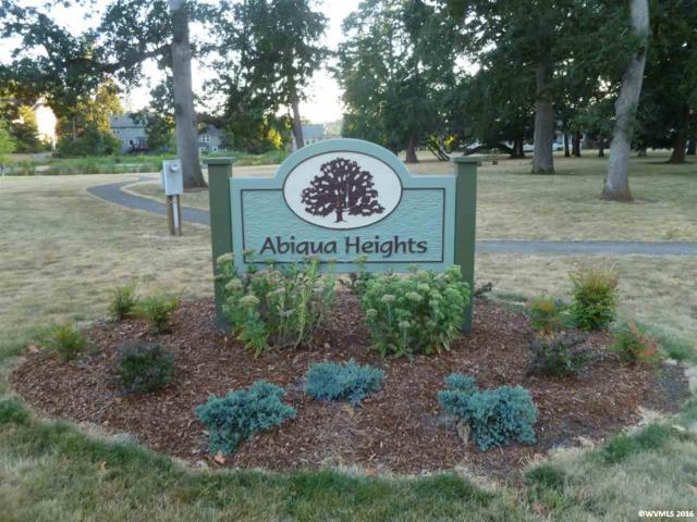 509 East View, Silverton, OR 97381 (MLS #709315) :: HomeSmart Realty Group