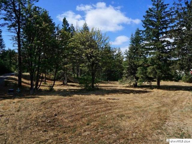 0 Buffalo, Grand Ronde, OR 97347 (MLS #713095) :: HomeSmart Realty Group