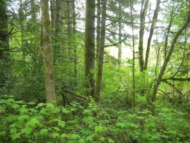 Bryant (Lot #1002), Falls City, OR 97338 (MLS #717619) :: HomeSmart Realty Group