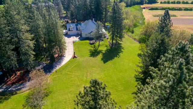 29348 SE Carroll Dr, Corvallis, OR 97333 (MLS #722593) :: Sue Long Realty Group