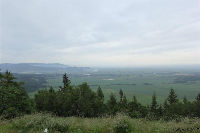 Washburn Heights (Lot #18), Brownsville, OR 97327 (MLS #725192) :: HomeSmart Realty Group