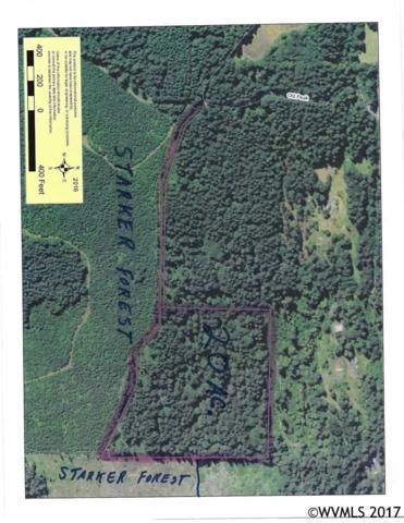 Old Peak, Philomath, OR 97370 (MLS #725244) :: Sue Long Realty Group