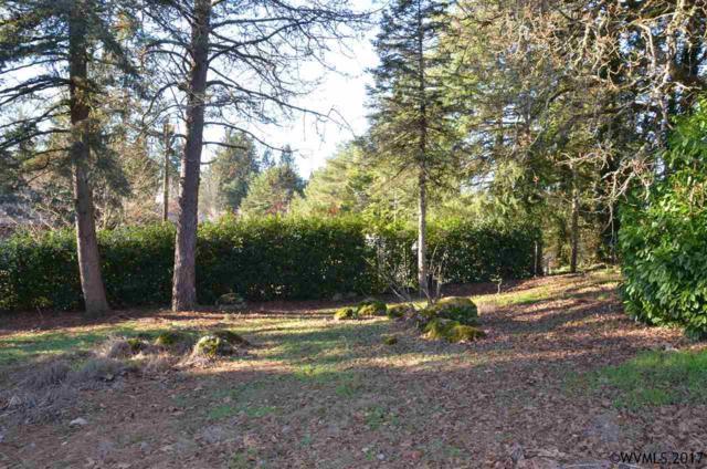 Red Hill SE, Salem, OR 97302 (MLS #727433) :: HomeSmart Realty Group
