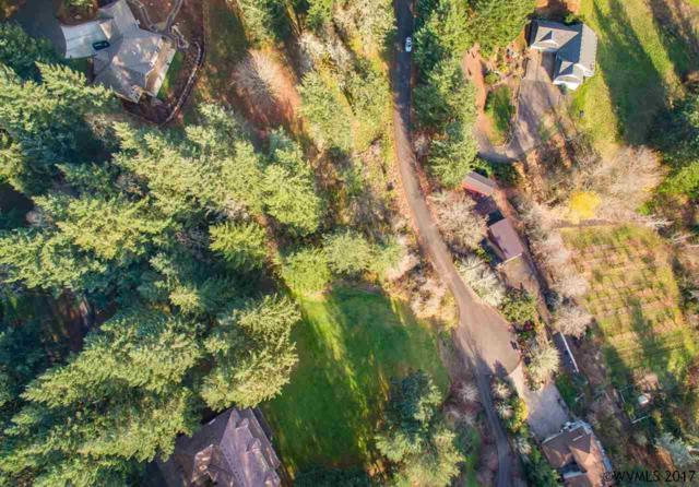 0 Wild Haven, Mcminnville, OR 97128 (MLS #727698) :: HomeSmart Realty Group