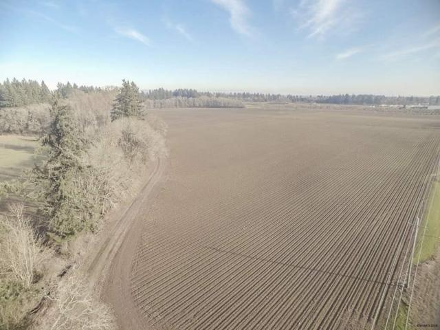 83.18 Acres Peoria, Corvallis, OR 97333 (MLS #728230) :: Sue Long Realty Group