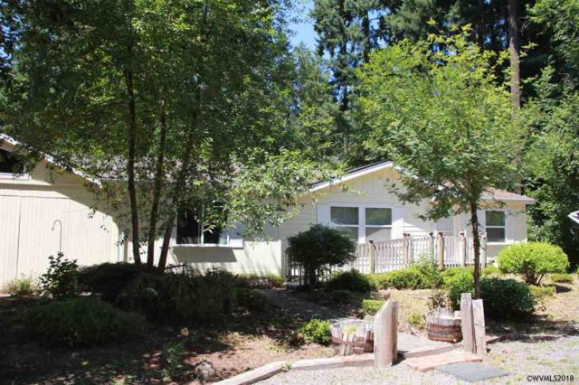 110 3rd St, Detroit, OR 97342 (MLS #730288) :: HomeSmart Realty Group