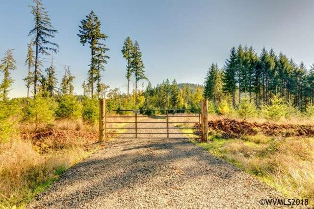 15501 NW Tupper, Yamhill, OR 97148 (MLS #731170) :: Premiere Property Group LLC
