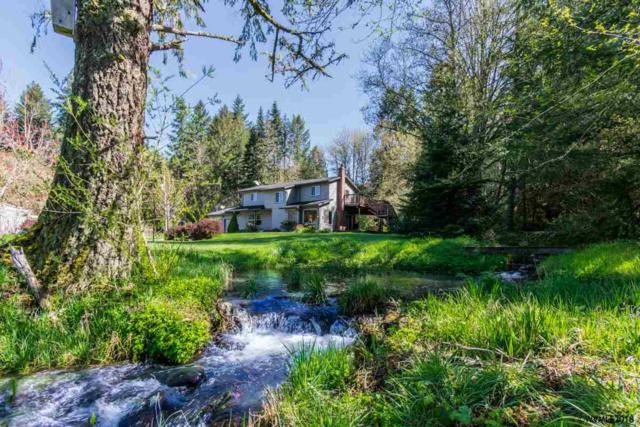 20067 Abiqua Rd NE, Scotts Mills, OR 97381 (MLS #731770) :: Song Real Estate