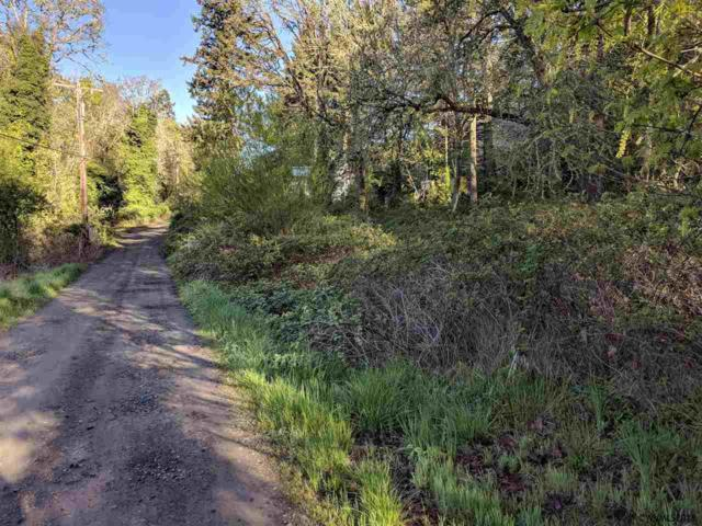 475 Riggs (Next To) NW, Salem, OR 97304 (MLS #732155) :: HomeSmart Realty Group