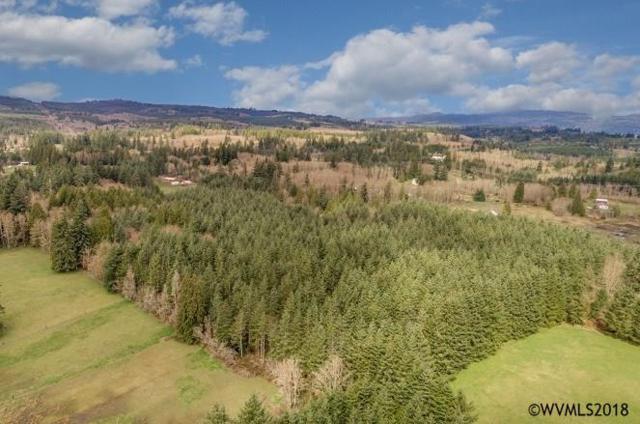 0 Wildwood, Rainier, OR 97048 (MLS #732257) :: Song Real Estate