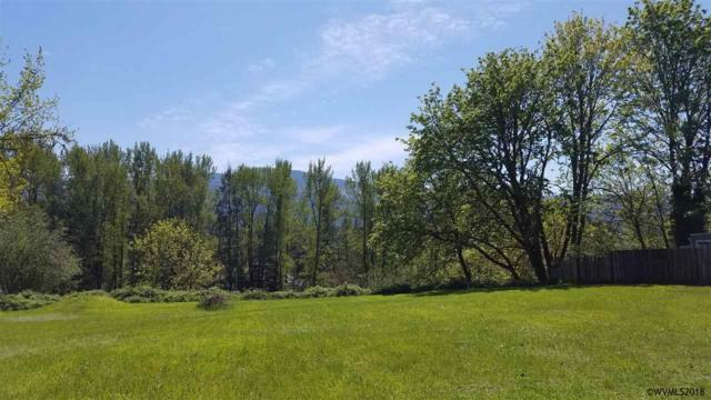163 NE 4th, Mill City, OR 97360 (MLS #732646) :: HomeSmart Realty Group