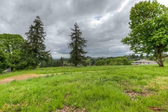 Parcel 3 Range View S, Salem, OR 97302 (MLS #733008) :: HomeSmart Realty Group
