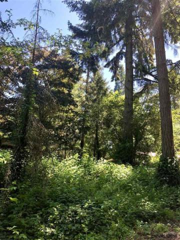 Doaks Ferry (Lot #5400) NW, Salem, OR 97304 (MLS #733358) :: Gregory Home Team