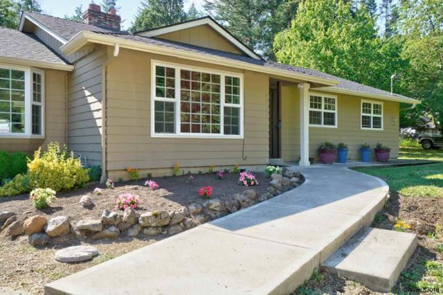 6721 Witzel Rd SE, Salem, OR 97317 (MLS #735568) :: HomeSmart Realty Group
