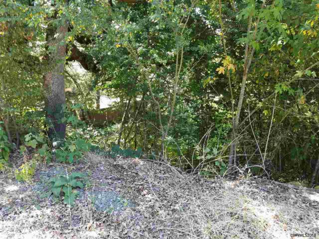 1109 N Scenic View, Stayton, OR 97383 (MLS #736519) :: HomeSmart Realty Group