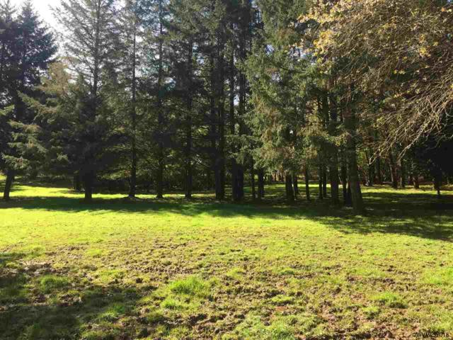 James Way Drive Dr, Aumsville, OR 97325 (MLS #737034) :: HomeSmart Realty Group