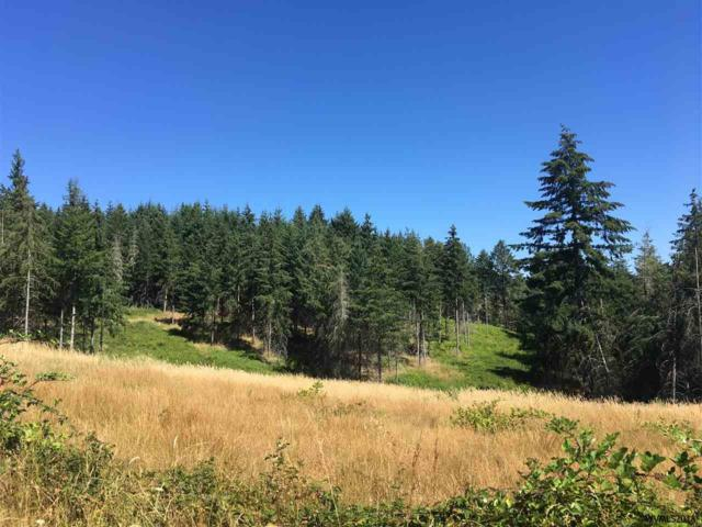 Water (Lot #4), Monroe, OR 97456 (MLS #737418) :: Sue Long Realty Group