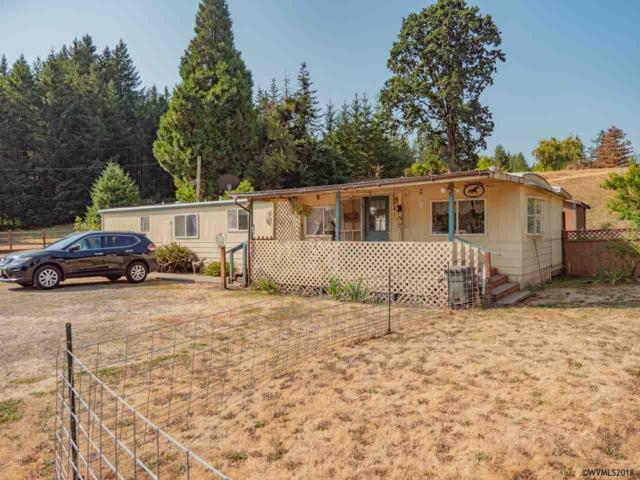 28200 Santiam Hwy, Sweet Home, OR 97386 (MLS #737473) :: HomeSmart Realty Group