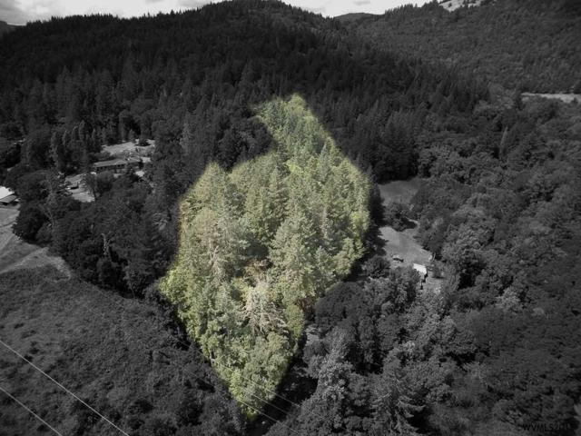 Lot 1900 NW Live Oak, Corvallis, OR 97330 (MLS #737770) :: Gregory Home Team