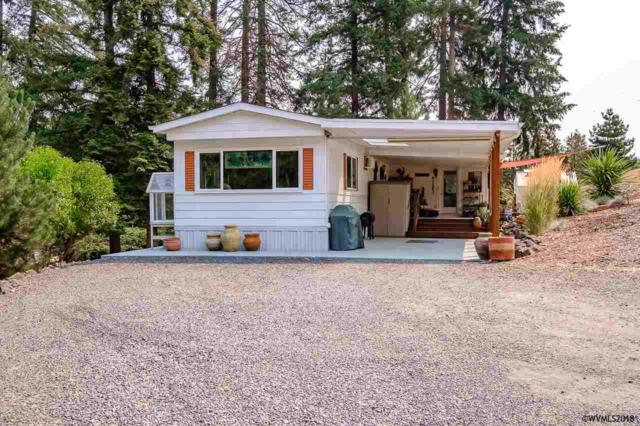 38171 Golden Valley Dr, Lebanon, OR 97355 (MLS #737829) :: Gregory Home Team