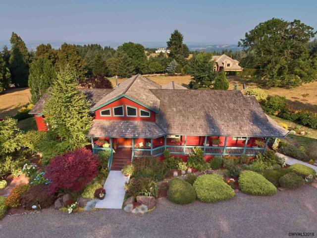 17730 NE Sunrise Peaks Ln, Hillsboro, OR 97123 (MLS #738148) :: HomeSmart Realty Group