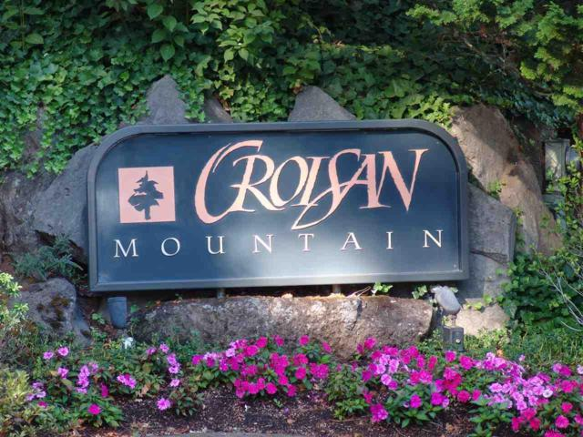 3835 Croisan Mountain S, Salem, OR 97302 (MLS #738164) :: Hildebrand Real Estate Group