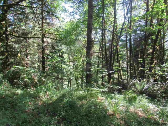Parcel R64326 North Fork Rd Se, Lyons, OR 97358 (MLS #738306) :: Song Real Estate