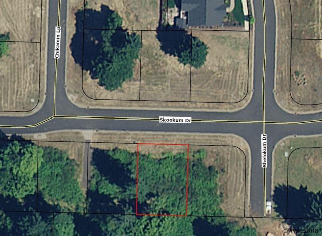 970 Skookum Dr, Silverton, OR 97381 (MLS #739121) :: HomeSmart Realty Group