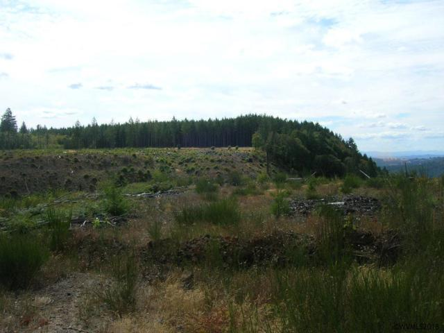 S Mccully Mountain, Lyons, OR 97358 (MLS #739885) :: HomeSmart Realty Group